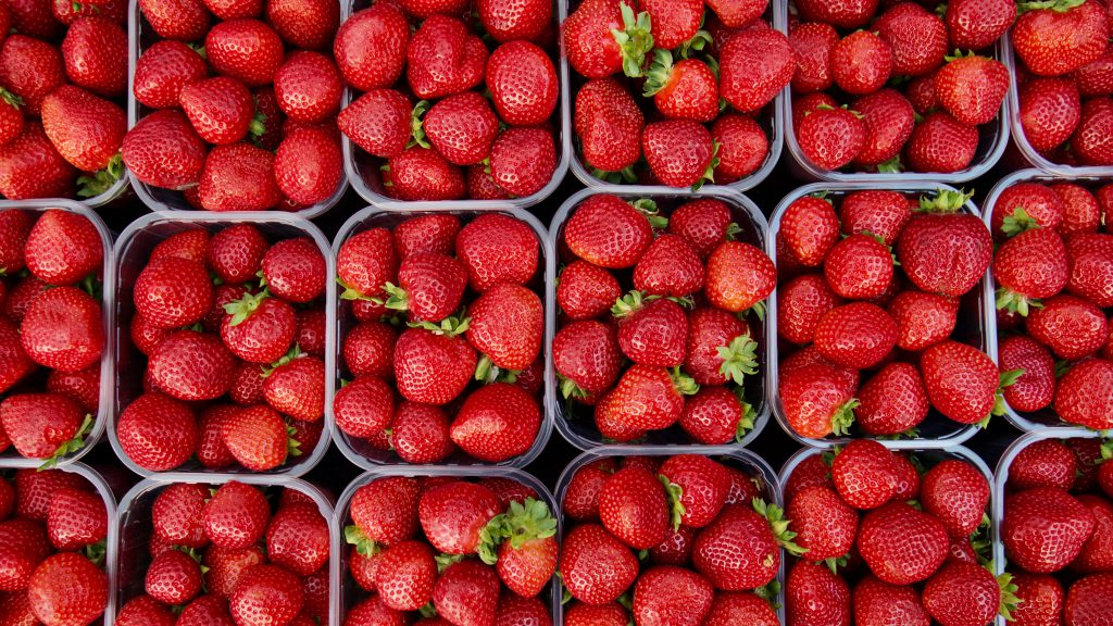Strawberries in pint containers