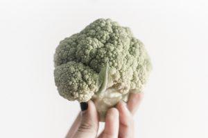 Young, greenish cauliflower being held agaist white backdrop