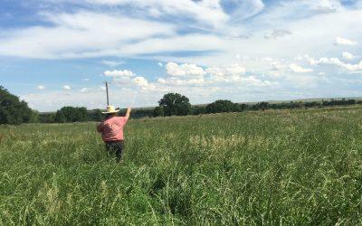 Larga Vista Ranch: A Tradition for the Future